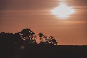 wales view sun coast