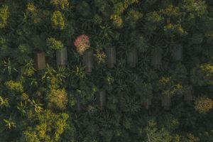 drone photographer travel