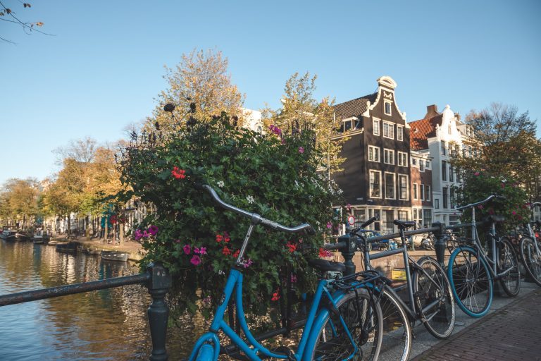 amsterdam bicycle flowers photography